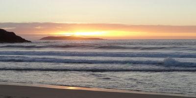 Pettrailer UK Early Bird Trail Beach Sunrise