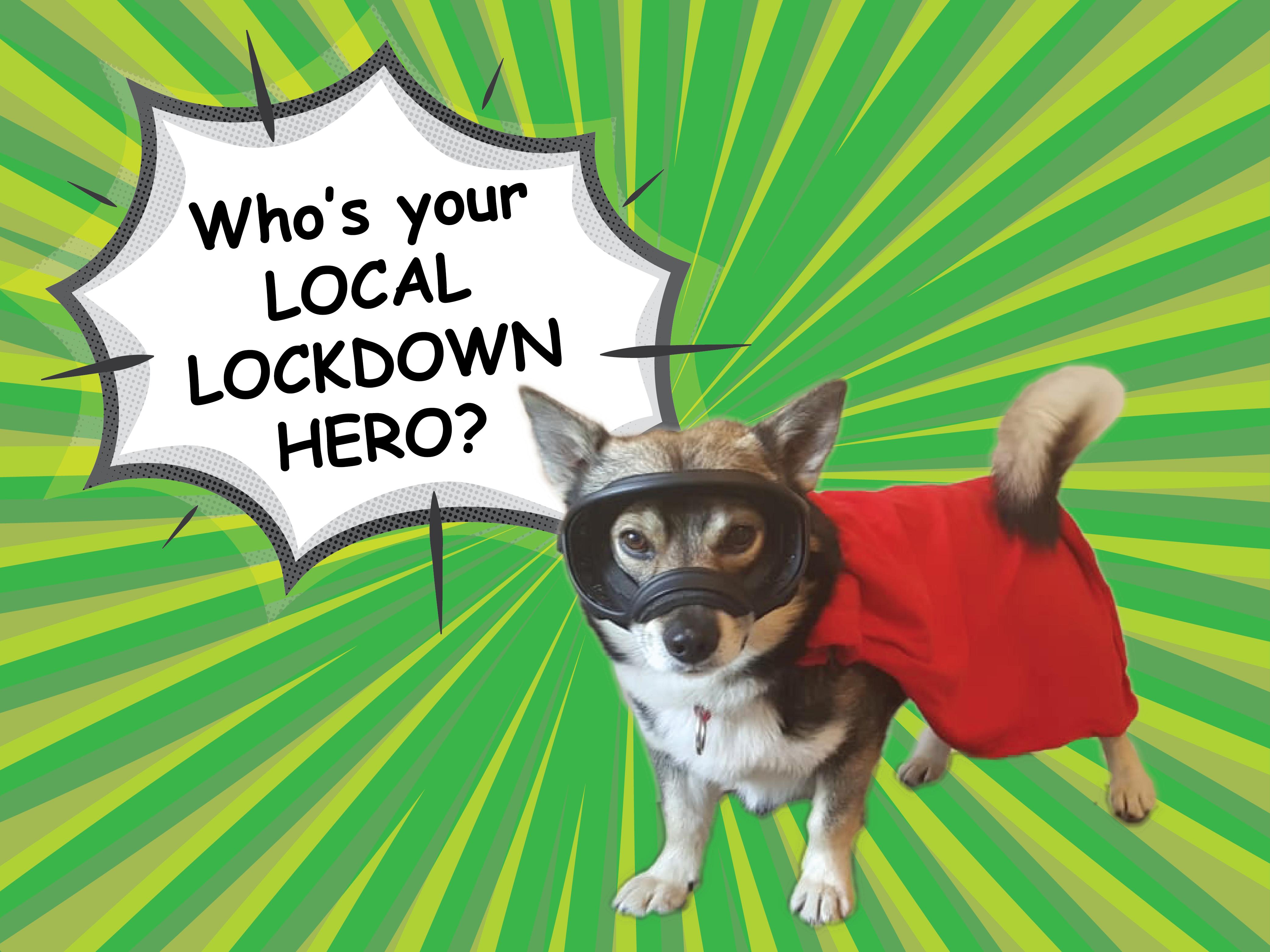 Pettrailer UK Lockdown Hero Promotion